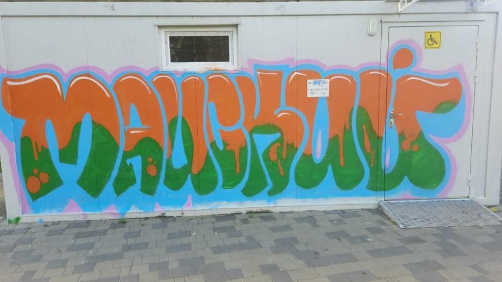 В парке Брянска разгромленный вандалами туалет украсили граффити
