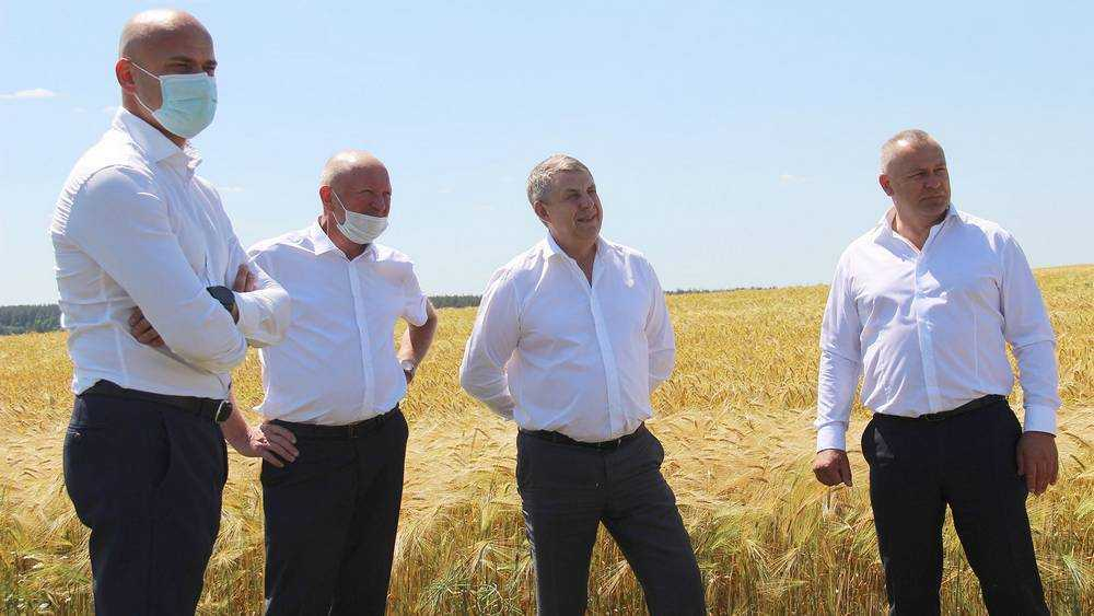Брянский губернатор Богомаз пообещал разобраться с высокими ценами на морковь и картофель