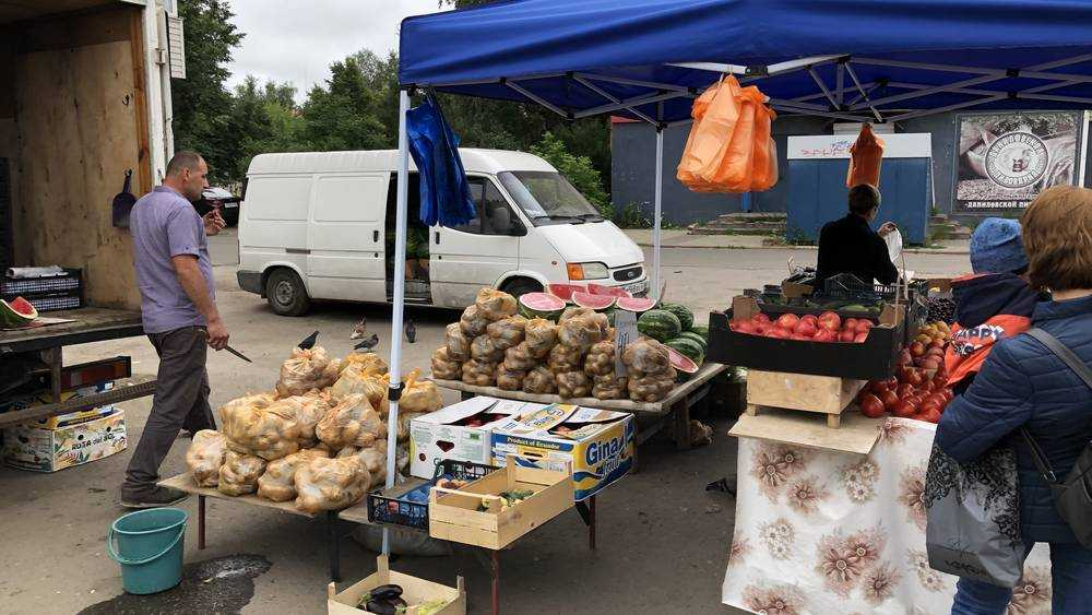 На рынки Брянска завезли первые арбузы из Дагестана и со Ставрополья
