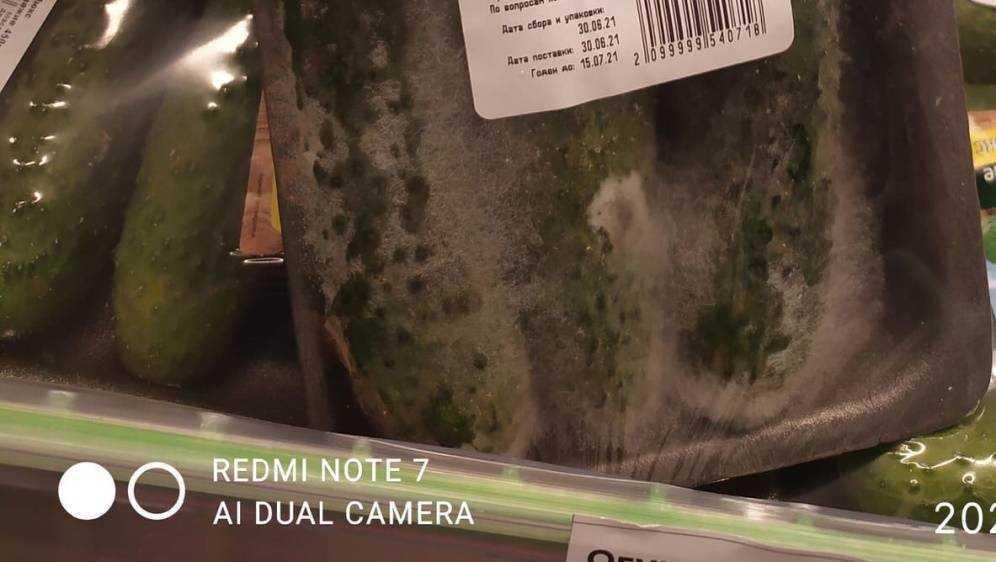 В Брянске покупатель супермаркета обнаружил плесень на огурцах