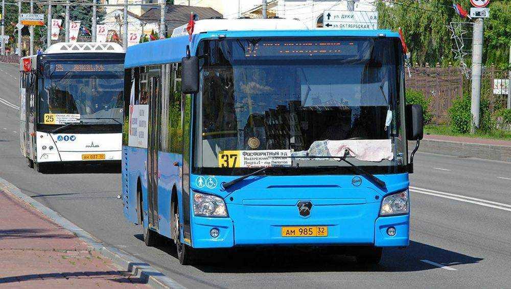 В Брянске большими автобусами заменят маршрутки № 10, 28, 38 и 47