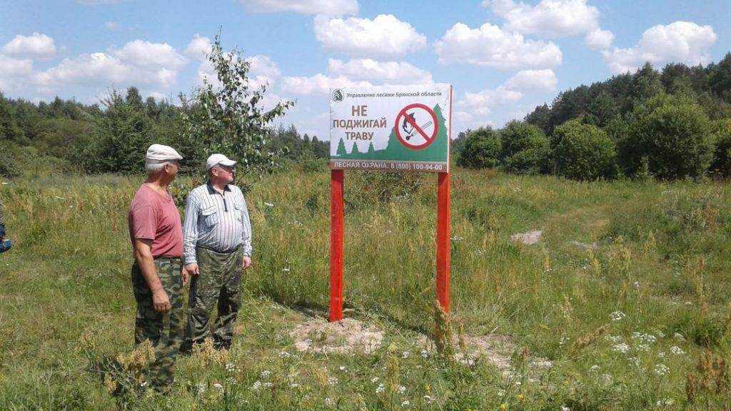 В Брянской области с 14 июля из-за угрозы пожаров запретили посещение лесов