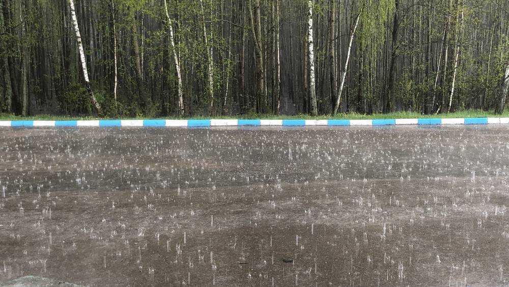 На Брянскую область 3 июля обрушился сильный ливень