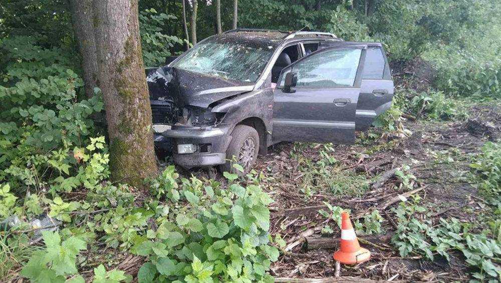 Брянская автомобилистка врезалась в дерево и покалечила своих пассажиров