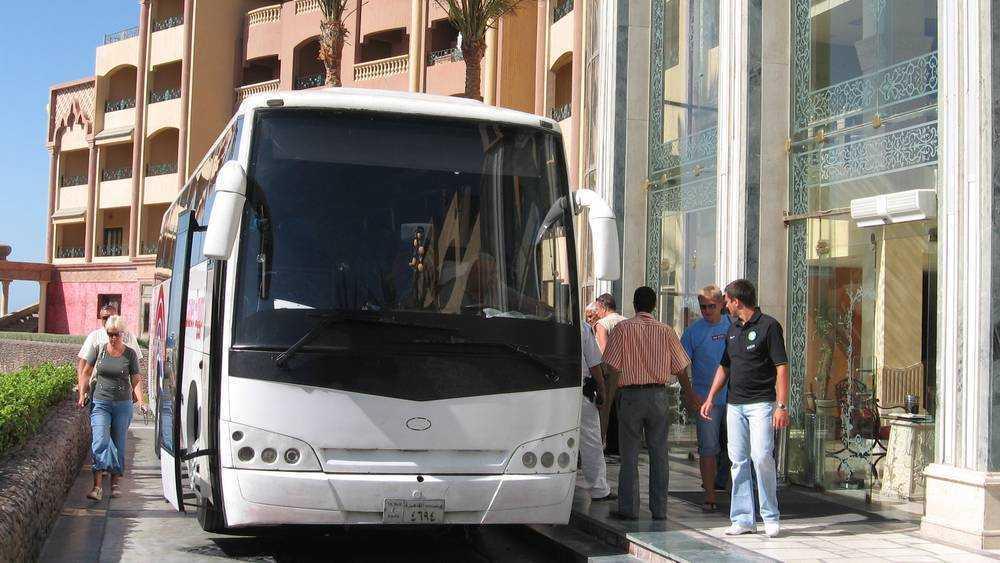 Брянск и курорты Египта свяжут авиарейсы в Хургаду и Шарм-эль-Шейх