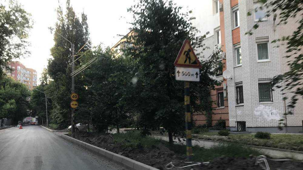 В Брянске на улице Горького при ремонте дороги сберегли максимум деревьев