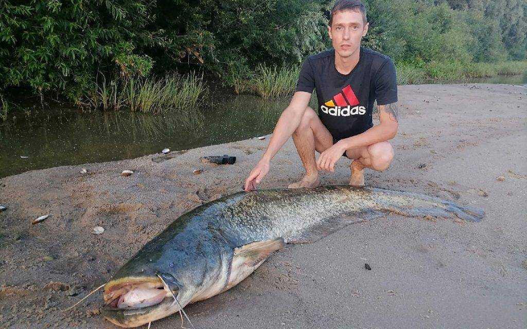 Житель Рязанской области поймал огромного сома