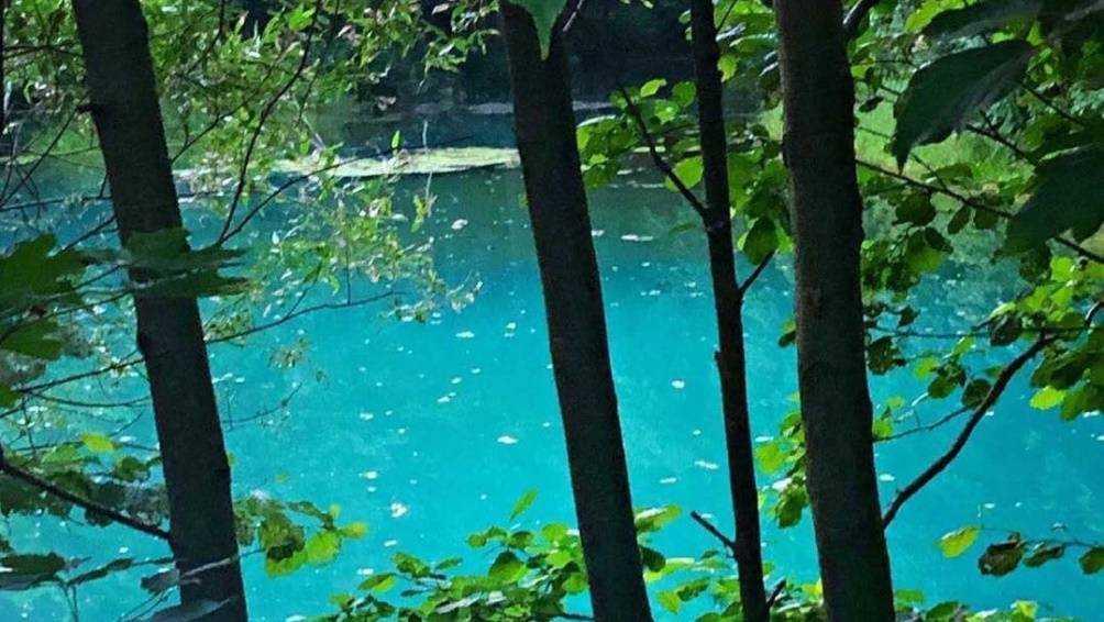 В Брянской области нашли живописное озеро с удивительно прозрачной водой