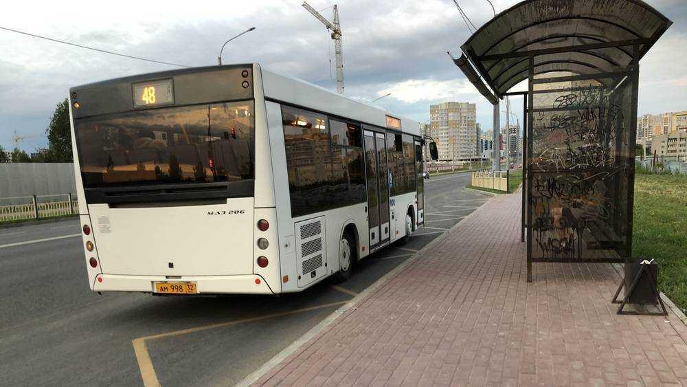 Жителям брянской Радицы-Крыловки добавили два рейса автобуса № 9