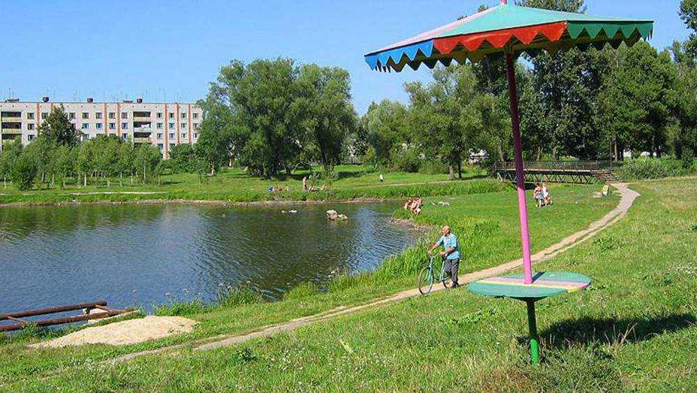 В новозыбковском озере Карна власти запретили купание