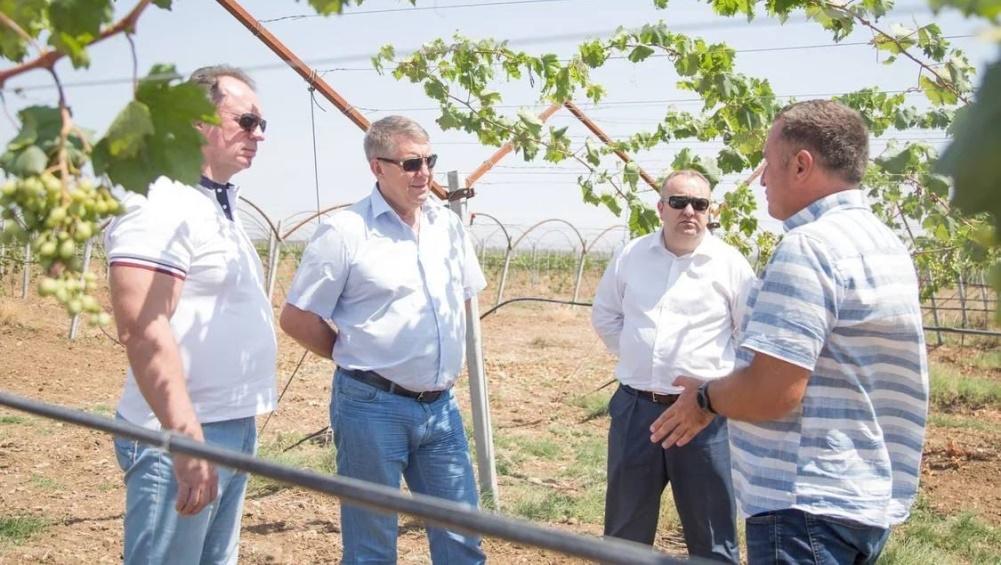 В Крыму брянскому губернатору показали современную винодельню