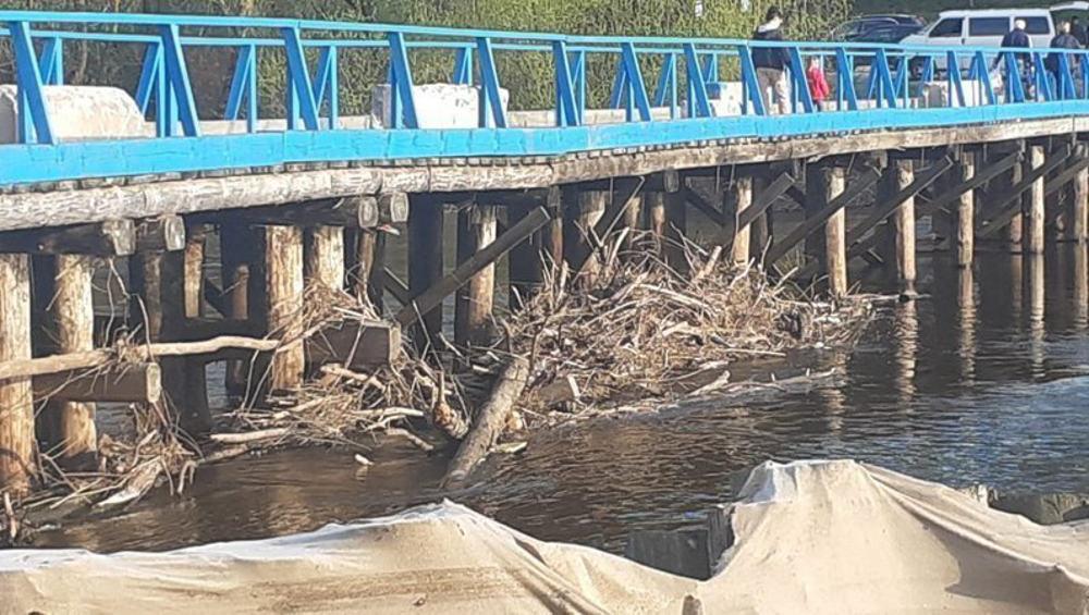 Брянцы попросили найти выделенные деньги на мост в Сельцо и построить его