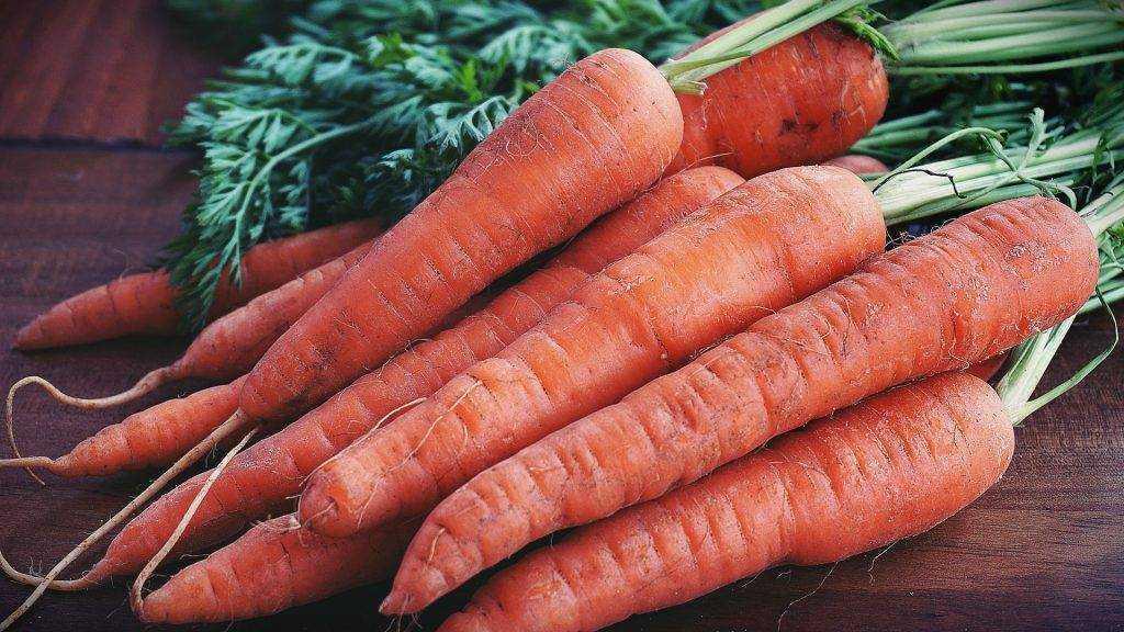 Россиянам предложили подумать о причинах огромных цен на морковь