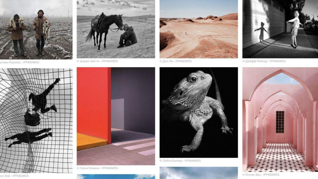 Россиянка победила в конкурсе сделанных с помощью iPhone фотографий