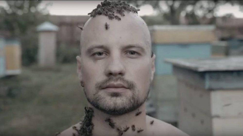 Россиянин жутким роликом привлек внимание к беде пчел