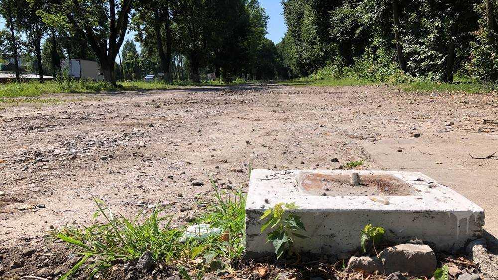 В Брянске ликвидировали стоянку, возле которой загадочно погибли липы