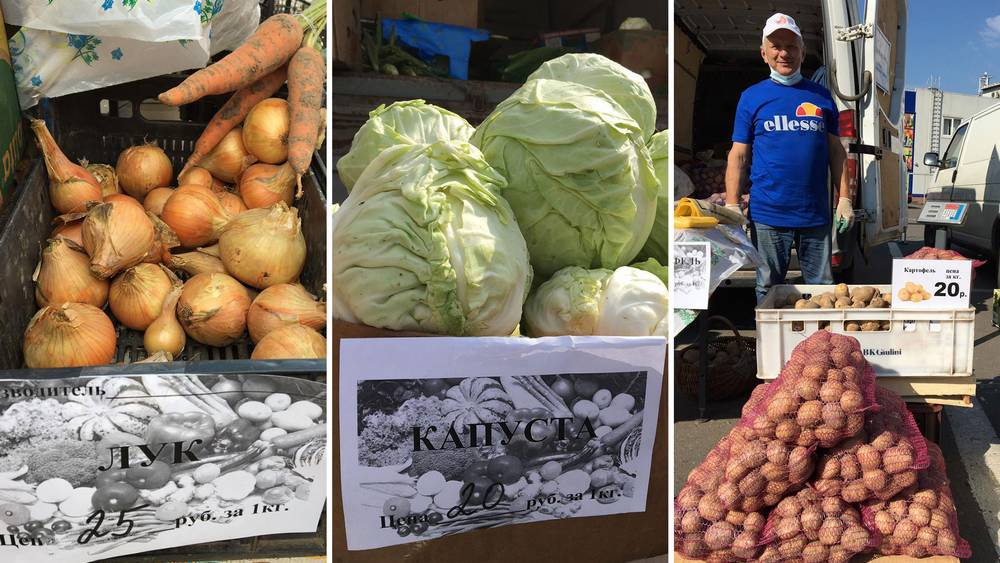 В Брянской области за счет ярмарок снизили цены на овощи и фрукты