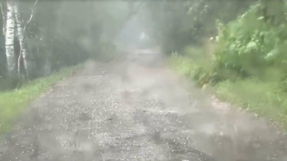 На Брянскую область вечером обрушился сильный ливень с грозой и крупным градом