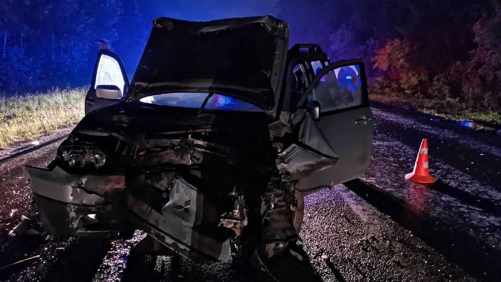 В массовой аварии на трассе Брянск-Дятьково погибла 4-летняя девочка