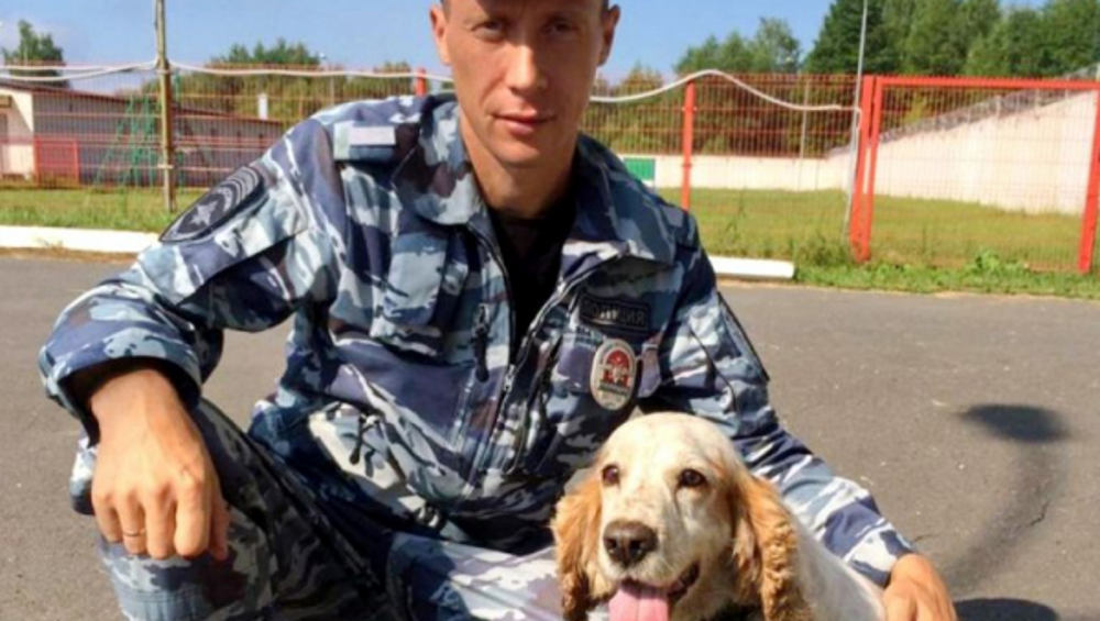В Брянске на улице Калинина спаниель Микки нашел схрон боеприпасов