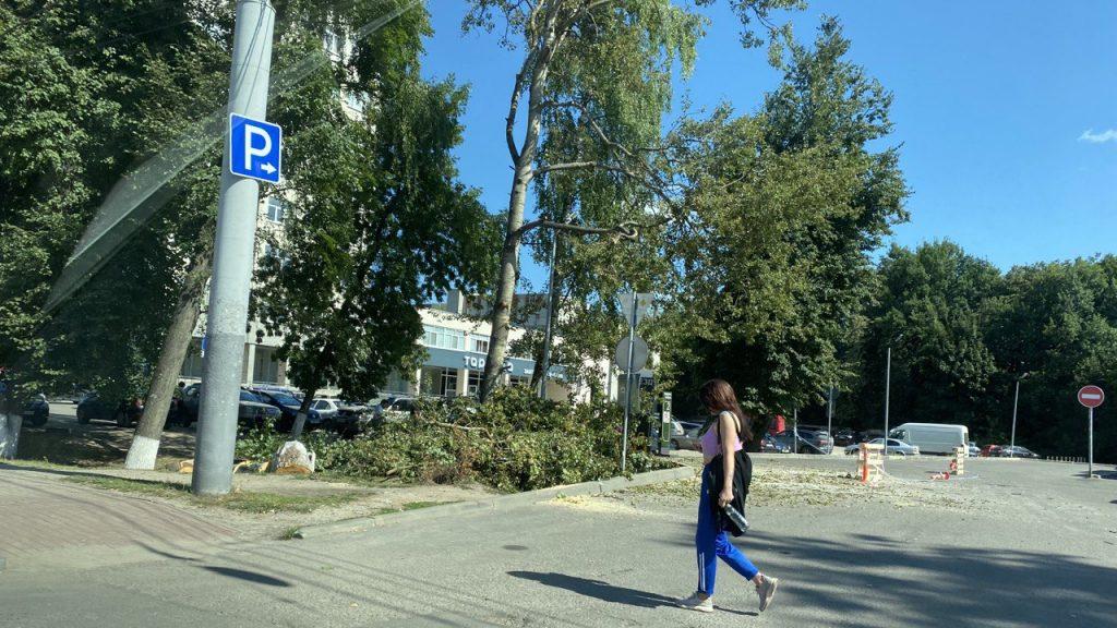 В Брянске устранили смертельную опасность возле «Макдоналдса»