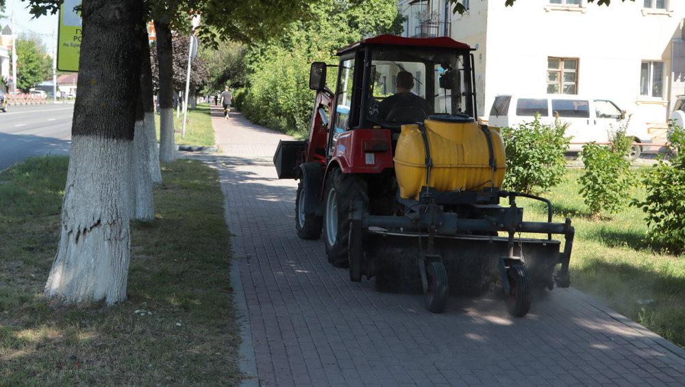 В Брянске за июль покосили траву на 50 гектарах и собрали 10 тысяч тонн песка