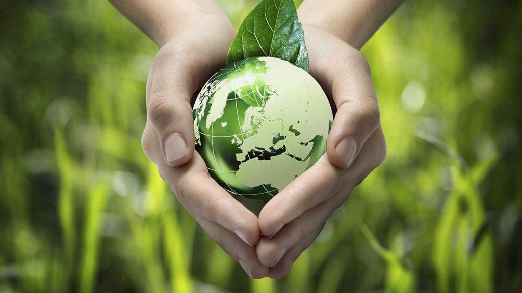 Зачем нужен экологический сертификат