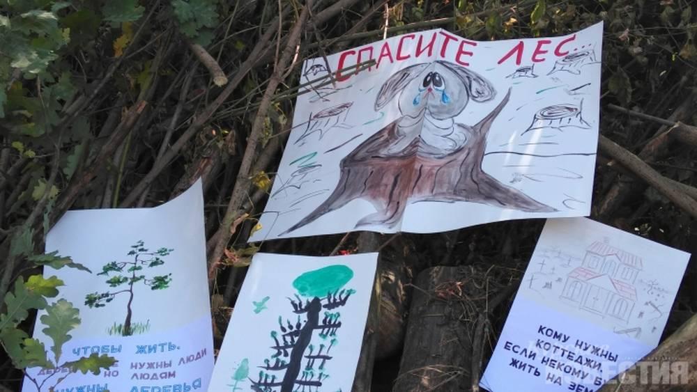В лесу депутата началась партизанская война с топорами и секаторами