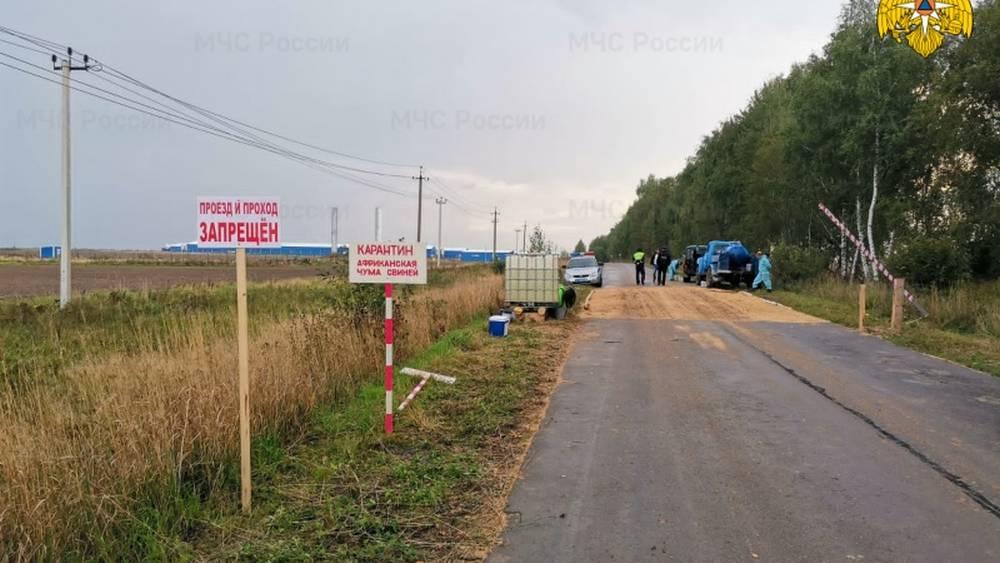 Режим ЧС ввели в Жуковском районе из-за обнаружения африканской чумы свиней