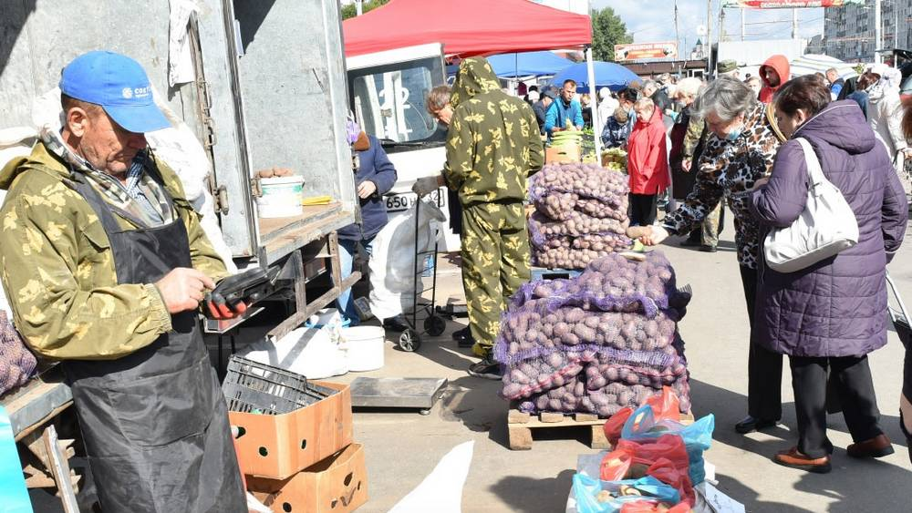 В Брянске на ярмарках овощи и фрукты прошли проверку в лаборатории