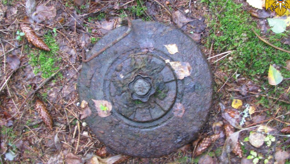 Под Брянском на Партизанской поляне нашли старую противотанковую мину