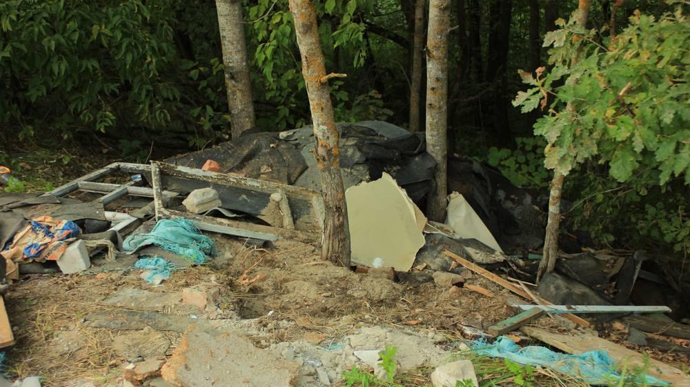 В Брянске на берегу озера Орлик совершили серию чудовищных преступлений