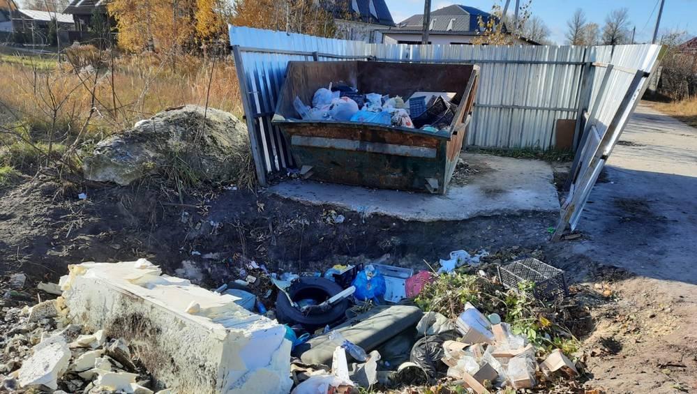 В Брянске установили первый мусорный контейнер с ямой-ловушкой