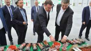 В Брянской области на 7 гектарах открыли уникальный тепличный комплекс