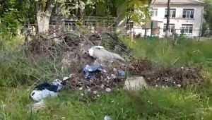 Жителей Брянска возмутили свалки вокруг детского дома