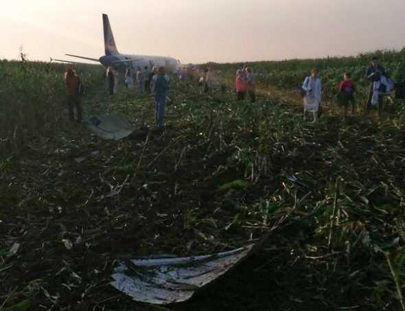 Появилось видео посадки Airbus А321 на кукурузное поле в Подмосковье