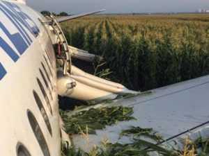 Стало известно, что чуть не погубило севший на кукурузное поле Airbus А321
