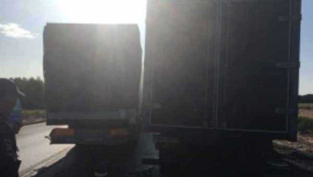На брянской трассе при столкновении фур погиб 48-летний водитель