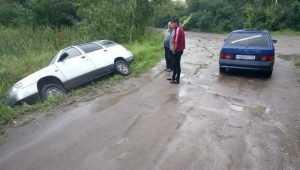 В Брянске возле озера легковушка с цыганами съехала в кювет