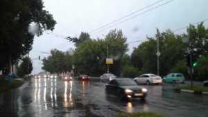 Брянцам 16 августа пообещали дожди с грозами и 24-градусное тепло