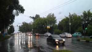 На Брянскую область сильные дожди обрушатся 8 и 9 августа