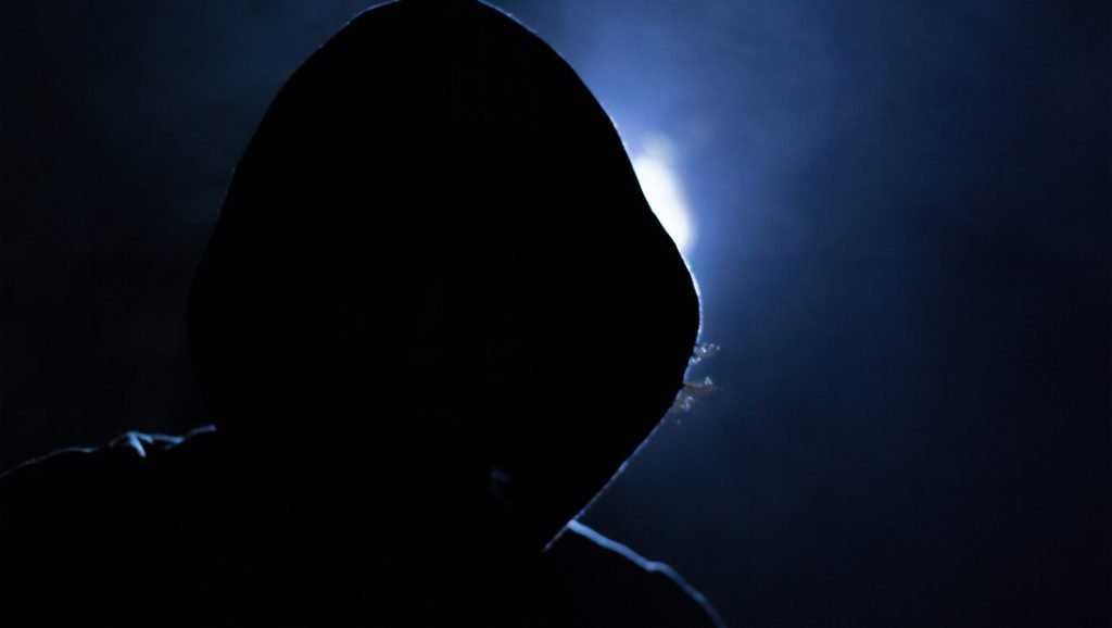 Опасный омут Интернета: России требуется сильная киберполиция