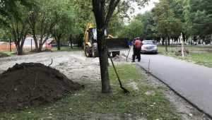 В Брянске возле Кургана Бессмертия начали строить спортивную площадку