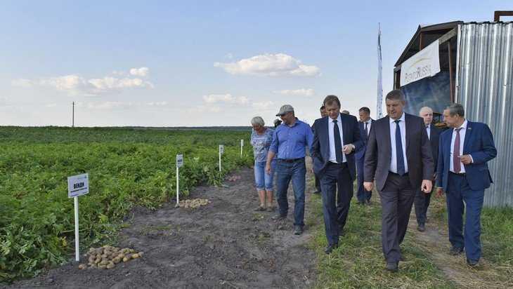 Министр поддержал идею провести в Брянской области День поля