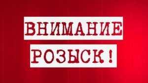 Полиция Брянска обратилась к очевидцам ДТП с раненой женщиной