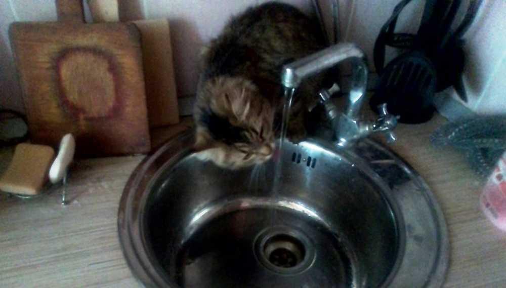 Жителей Клинцовского района незаконно заставляли платить за воду