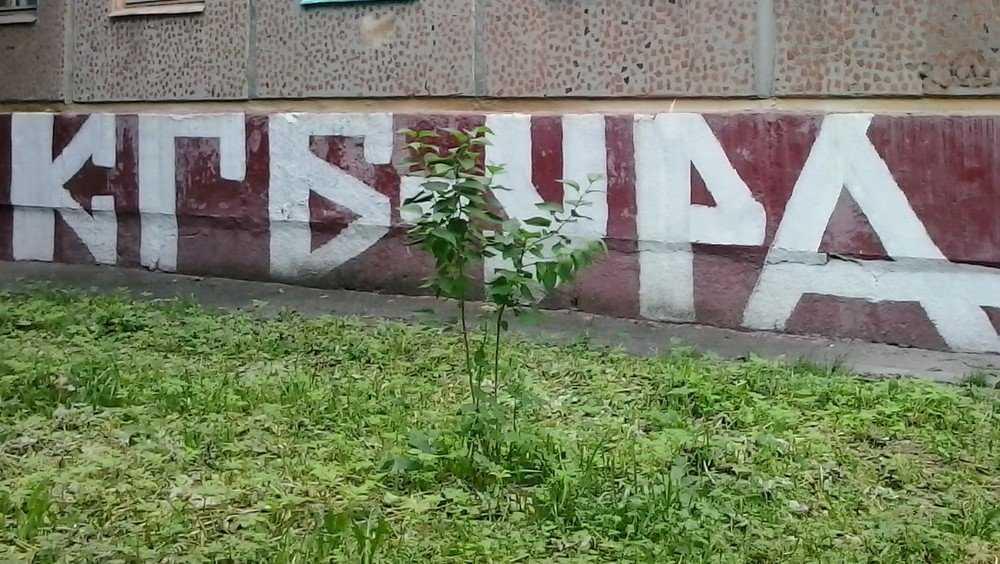 Жилищная инспекция Брянской области попала в скандал с «крепостными»