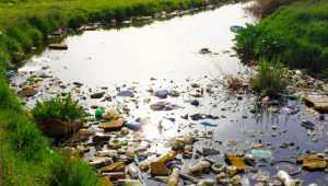 Водоотводящий канал Белобережского озера забросали мусором