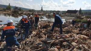 Жительница брянской глубинки увидела дома корни мировых катастроф