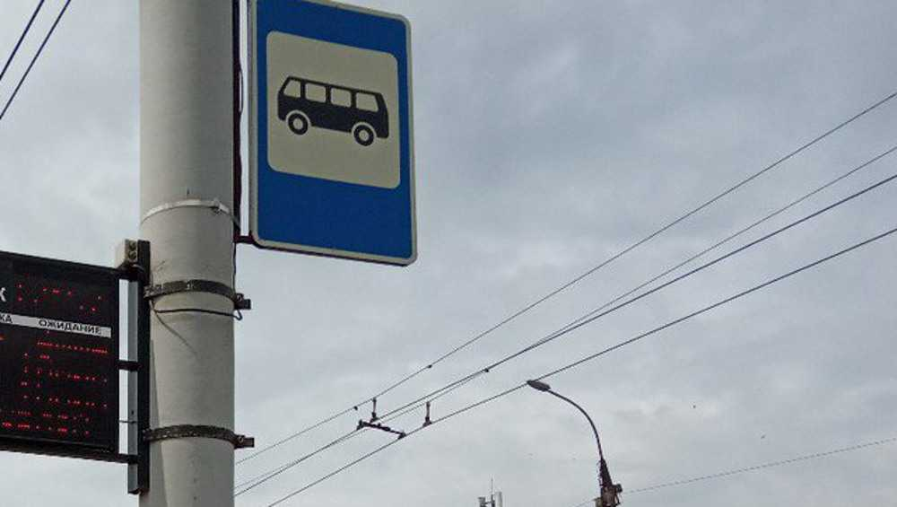 На пяти брянских остановках разместят расписание движения маршруток